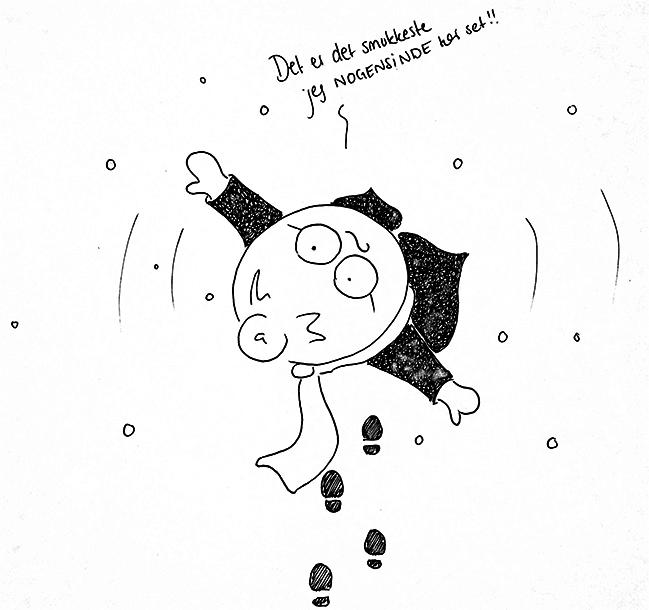 Sne-elsker - DenLilleSorte.org